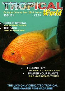 Subscriptions tropical fish hobbyist magazine autos post for Tropical fish magazine